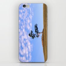 Tree on the island of Olkhon iPhone & iPod Skin