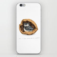 Belly of a Walnut iPhone & iPod Skin