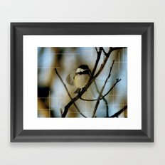 Black Capped Chickadee in motion with speckles Framed Art Print
