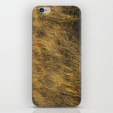 Montauk Grass Sand Dunes iPhone & iPod Skin