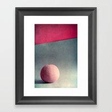 Cantaloupe  Framed Art Print