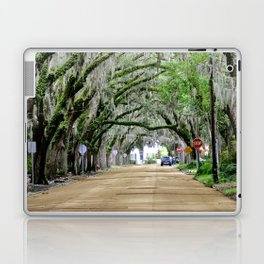 The Fountain of Youth 450th Year Celebration Laptop & iPad Skin