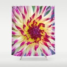 Dahlia / In The Garden / 10 Shower Curtain