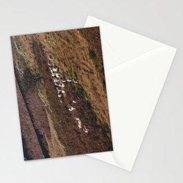 Sheep on the hillside. Kirkstone, Cumbria, UK. Stationery Cards