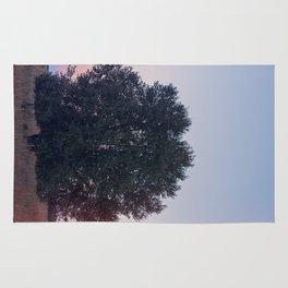 Dawn Pt. 1 Rug
