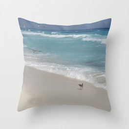 Carribean sea 8 Throw Pillow
