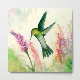 Hummingbird & Lupine watercolor Metal Print