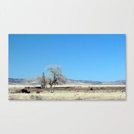 The Plains of San Agustin Canvas Print