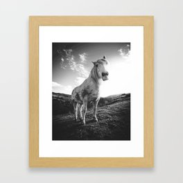 Horse (Black and White) Framed Art Print