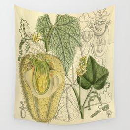 Sechium edule, Cucurbitaceae Wall Tapestry