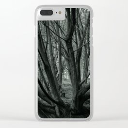 Delamere Forrest Clear iPhone Case