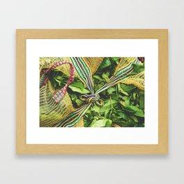 Freshly Picked Tea  Framed Art Print