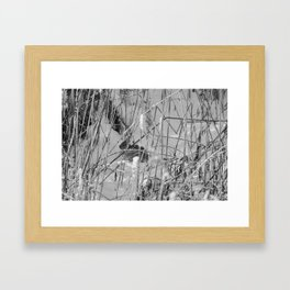 Rabbit in hiding Framed Art Print
