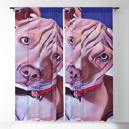 The American Pit Bull Terrier Blackout Curtain