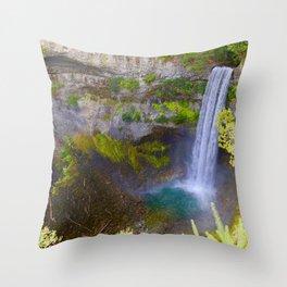 brandywine falls, 2017 Throw Pillow