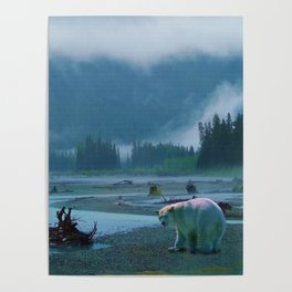 Great Spirit Bear and Misty River Poster