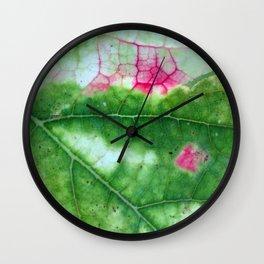 Vine Leaf in autumn fall macro 8 Wall Clock