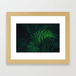 The Greenery Vines (Color) Framed Art Print