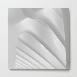 Curves Metal Print