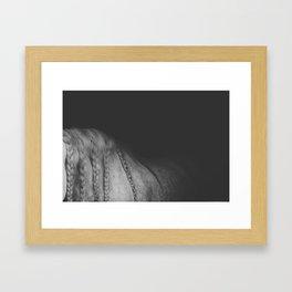 horse. Framed Art Print