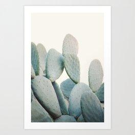 Pastel Cactus Art Print