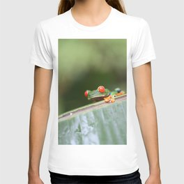 Red eye Frog on leaf Costa Rica Photography T-shirt