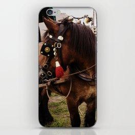 Dutch Drafter iPhone Skin