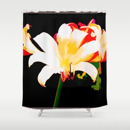 Song Of The Lilies Shower Curtain