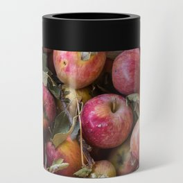 Pile of freshly picked organic farm apples with imperfections Can Cooler
