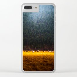 Beautiful Yellow Tall Grass With Mountain Pine Trees In background Majestic Landscape Clear iPhone Case