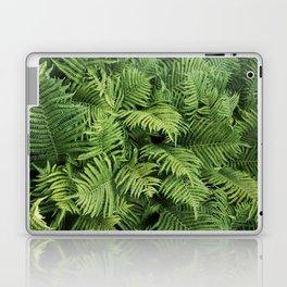 Fern Leaves Photography Laptop & iPad Skin