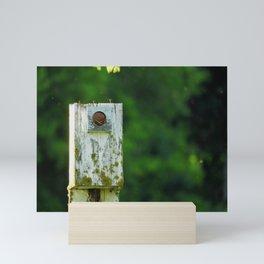 The Home is a Nest Mini Art Print