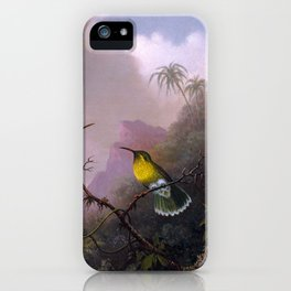 Martin Johnson Heade - Copper-tailed Amazili - Two Hummingbirds iPhone Case