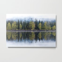 Forest Lake Reflection Metal Print