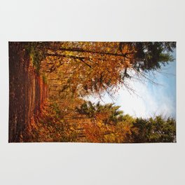 Autumn Trees Rug
