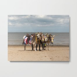 In the Donkey Ride Que Metal Print