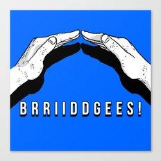 Bridges! Canvas Print
