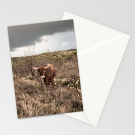 Stare Down - A Texas Bull in the Mesquite and Cactus Stationery Cards