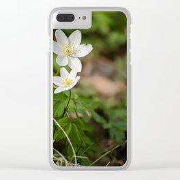 Anemone nemorosa Clear iPhone Case