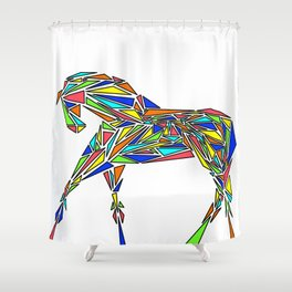 Geometrically Sound (Color Version) Shower Curtain