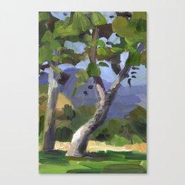 BETTE DAVIS PARK, plein air landscape by Frank-Joseph Paints Canvas Print