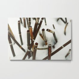 Snowy Reeds on the River Bank Metal Print