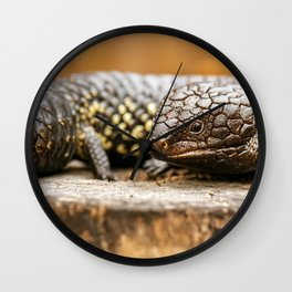 Shingleback also known as Tiliqua rugosa Wall Clock