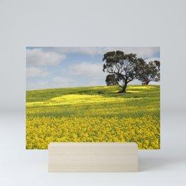 Canola Landscape in Australia Mini Art Print