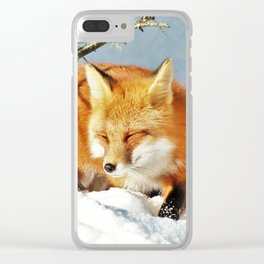 Algonquin Red Fox in the Snow Clear iPhone Case