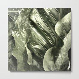 Curvey Leafy Metal Print
