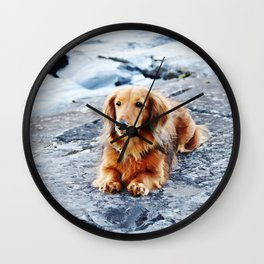 Red longhaired dachshund on waterfront cliff Wall Clock