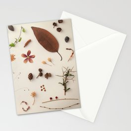 Botanic Party 02 Stationery Cards