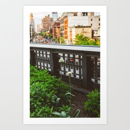 Highline Blooms Art Print
