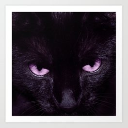 Black Cat in Amethyst - My Familiar Art Print